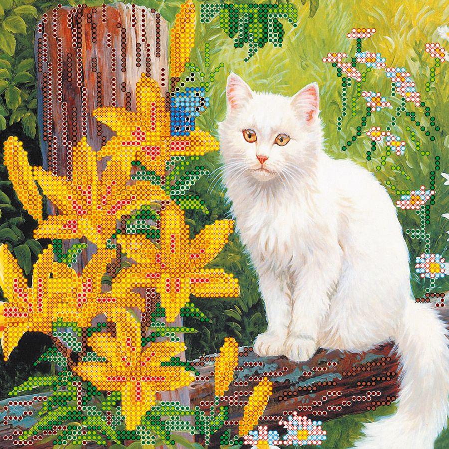 Белый кот вышивка бисером 62